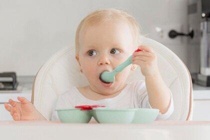 Nourriture pour bébés